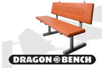 Dragon Bench